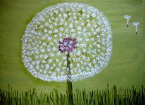 Pusteblumen, Löwenzahn, Blumen, Grün