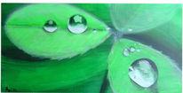 Grün, Klee, Monochrom, Nahaufnahme