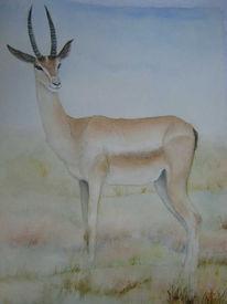 Malerei, Aquarellmalerei, Tiere,