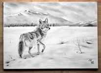 Hund, Berge, Wolf, Einsamkeit