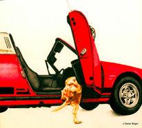 Hund, Cabrio, Aquarell