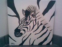 Afrika, Zebra, Schwarz weiß, Malerei