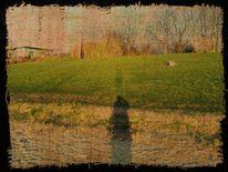Person, Frühling, Wiese, Schatten