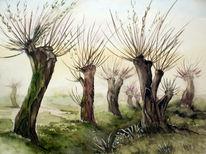 Baum, Aquarellmalerei, Landschaft, Kopfweide