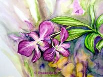 Blumen, Orchidee, Stillleben, Aquarell