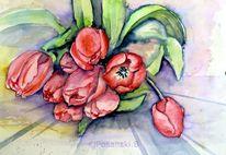 Aquarellmalerei, Blumen, Tulpen, Aquarell