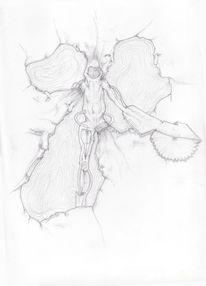 Skizze, Zeichnungen