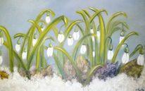 Schneeglöckchen, Kindle, Blüte, Pflanzen