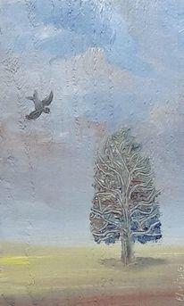 Fliegen, Wolken, Holzbohle, Vogel