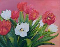Weiß, Rot, Frühlingsgruß, Pflanzen