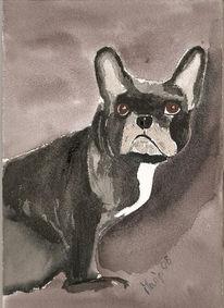 Hund, Blick, Malerei, Tiere