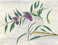 Früchte, Zeichnung, Pflanzen, Baum
