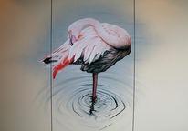 Zeichnung, Flamingo, Skizze, Zeichnungen