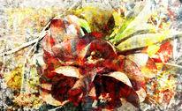 Natur, Textur, Recolor, Digital