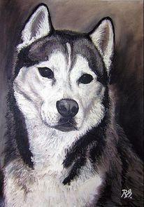 Portrait, Hund, Tiere, Pastellmalerei