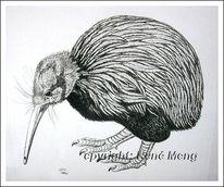 Portrait, Kiwi, Tiere, Vogel