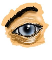 Grafik, Augen, Portrait, Teil
