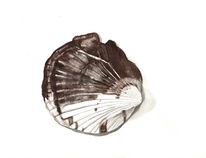 Grafik, Aquarellmalerei, Muschel, Meer