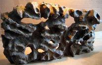 Felsen, Lebensraum, 3d, Reptil