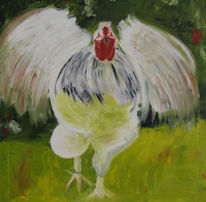 Huhn, Tiere, Hühnerfarm, Weiß