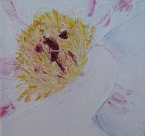 Blüte, Stauden, Pfingstrose, Ölmalerei
