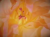 Ölmalerei, Aprikot, Blumen, Malerei