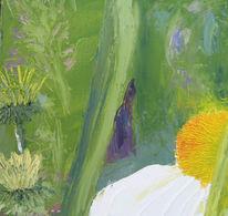 Blumen, Stauden, Sonnenhut, Blüte