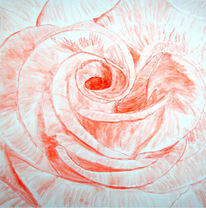 Natur, Aquarellmalerei, Rose, Rot