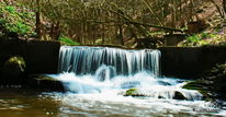 Wasser, Brodenbach, Mosel, Fotografie