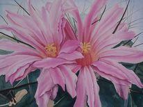 Kaktus, Realismus, Aquarellmalerei, Aquarell
