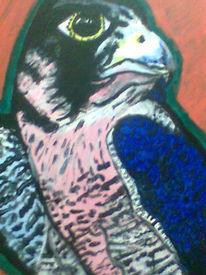 Vogel, Malerei, Adler, Zeichnungen