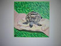 Acrylmalerei, Tierportrait, Schildkröte, Tiere
