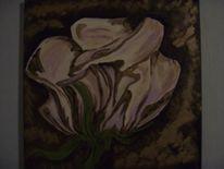 Rose, Braun, Blüte, Blumen