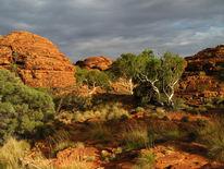 Malerei, Australien