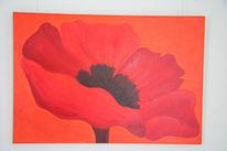 Malerei, Blüte, Klatschmohn