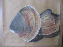 Grafik, Pastellmalerei, Meer, Muschel