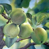 Früchte, Bildende, Atelier, Ölmalerei
