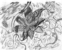 Policromos, Pflanzen, Zeichnung, Zeichnungen