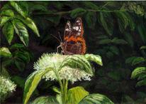 Schmetterling, Sommer, Malerei