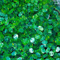 Grün, Abstrakt, Malerei, Gemälde