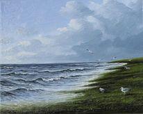 Ostfriesland, Meer, Deich, Möwe