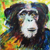 Farben, Affe, Tiere, Blick