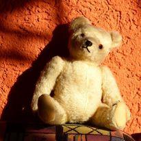 Teddybär, Fotografie, Teddy