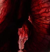 Abstrakt, Fotografie