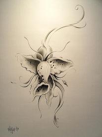 Blüte, Zeichnung, Blumen, Bleistiftzeichnung