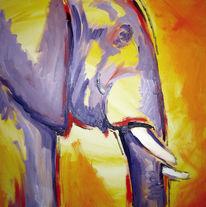 Elefant, Afrika, Violett, Gelb