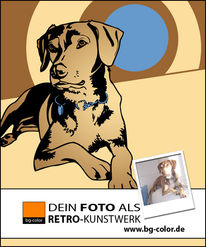 Tierportrait, 70er, Illustration, Hund