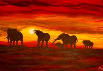 Elefant, Rot, Sonnenuntergang, Herd