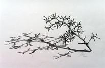 Ast zeichnen, Weintrauben, Filigran, Zart