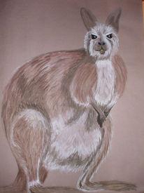 Aquarellmalerei, Känguru, Malerei